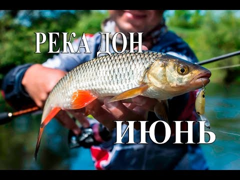 рыбалка на спиннинг в липецкой области контакте