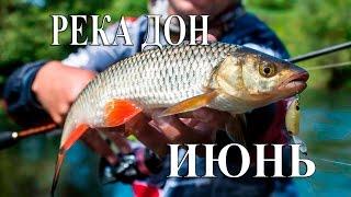 Рыбалка на Дону в Воронежской области - видео рыбалки и особенности зимней ловли