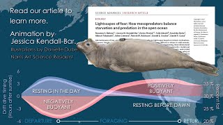 Skinny seals sacrifice safety for sustenance