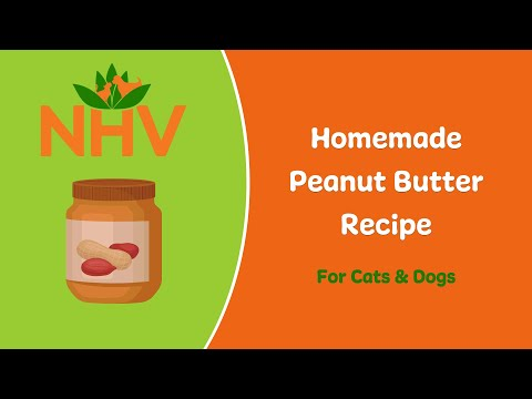 Homemade Peanut Butter For Pets With Just TWO Ingredients!