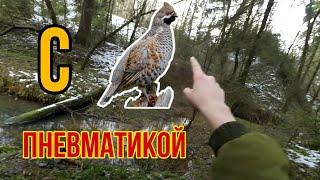 Охота на рябчика с пневматикой и манком 2020
