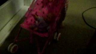 linsey playing with toy stroller