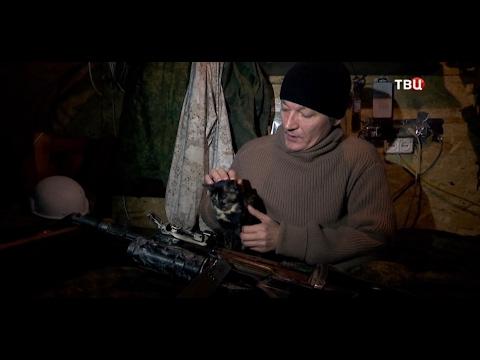 Предатели 18+. Часть 2. Война с Украиной. Крым. Донбасс.
