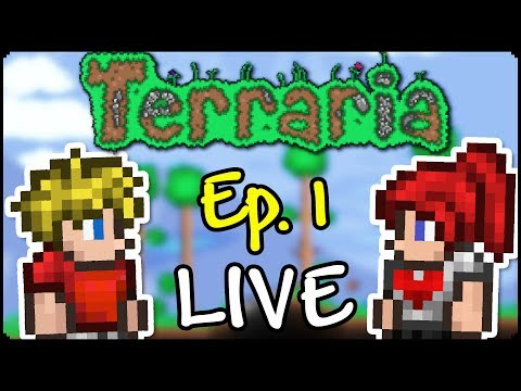 Terraria LIVE | Ep. 1 - Egy új Világ! - w/DoggyAndi