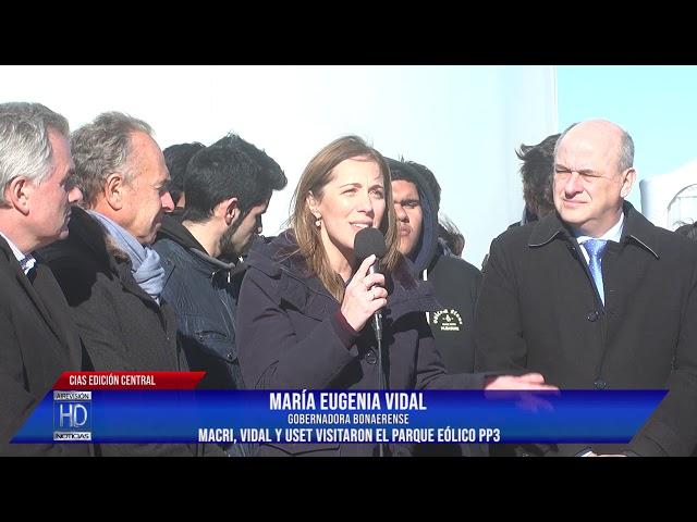 Vidal  Parque Eólico PP3