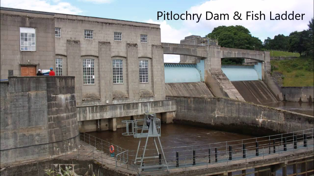 Pitlochry dam and fish ladder scotland youtube for Dam fish count