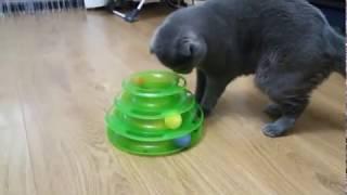 Игрушка для кота с интернет-магазина AliExpress (АлиЭкспресс)