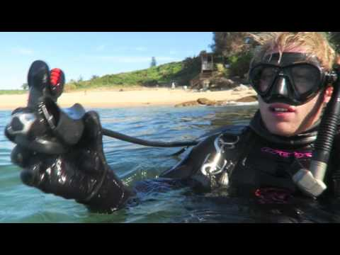 Dive Regulator Care