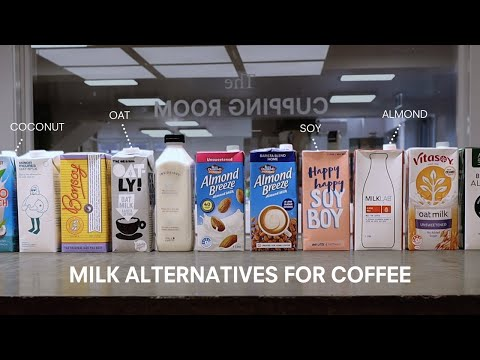 Milk Alternatives for Coffee (Tested & Compared)