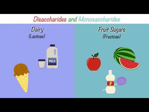 The FODMAP Diet