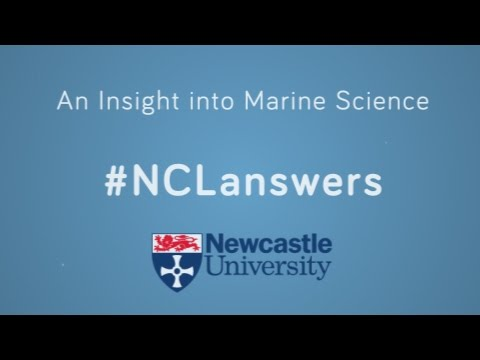 An Insight in to Marine Science