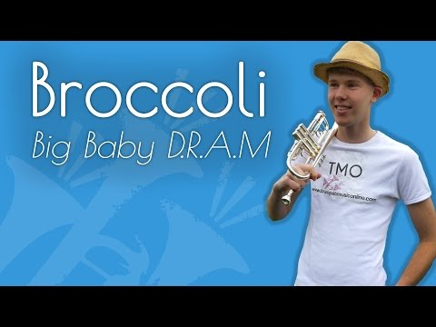 Big Baby D.R.A.M. - Broccoli (TMO Cover)
