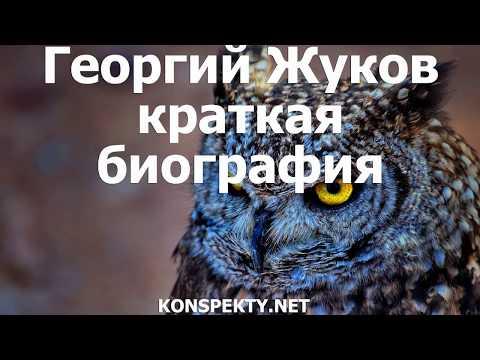 Георгий Жуков краткая биография