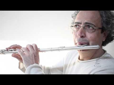 """<span class=""""title"""">prove audio e istruzioni zi flute Briccialdi - Dizi</span>"""