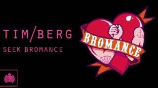 Tim Berg - 'Seek Bromance' (Avicii's Vocal Edit) thumbnail
