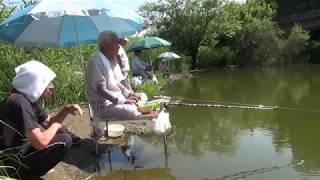 近所の池で、ふな釣り
