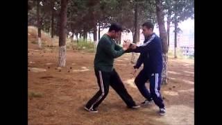 24 формы Тайцзи Цюань боевые применения - Е ма фень цзун