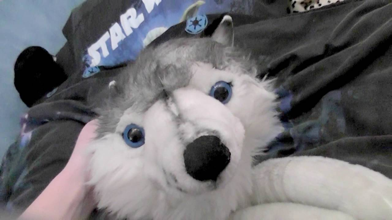Package Opening Big Husky Plush Howl Youtube