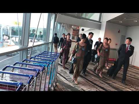 Singapore Airlines A380 Cabin Crew Disembarking Singapore Changi Airport 2017