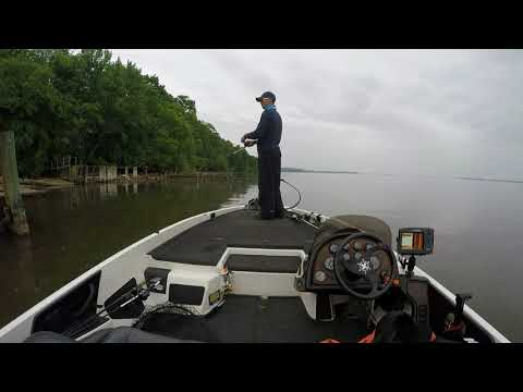 BASS FISHING TIPS AND LOCATIONS UPPER CHESAPEAKE BAY 2018