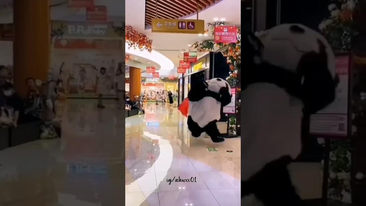 #short الباندا و الدب