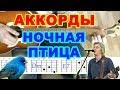 Ночная птица Аккорды Константин Никольский Воскресенье Разбор песни на гитаре Табы mp3
