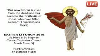 قداس عيد القيامة المجيد ٢٠١٦ - بث مباشر