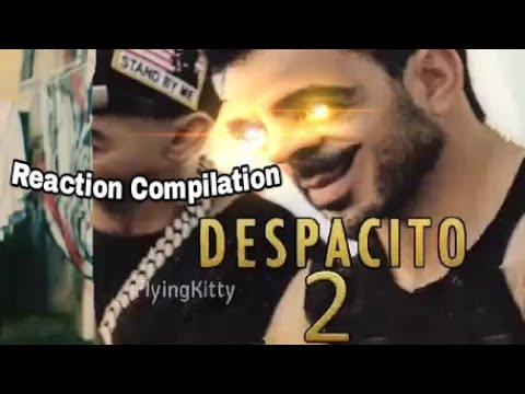 Despacito 2 (Parody Video) - Reaction Compilation