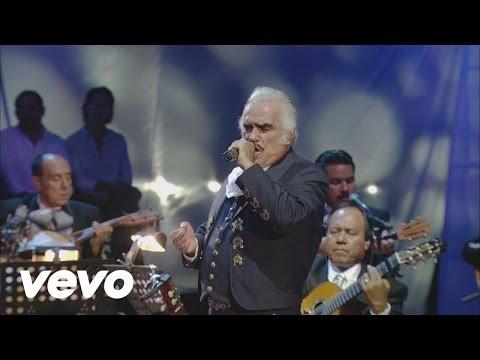 Especial Camachuelo Comun + Canto | adalavesиз YouTube · Длительность: 8 мин6 с
