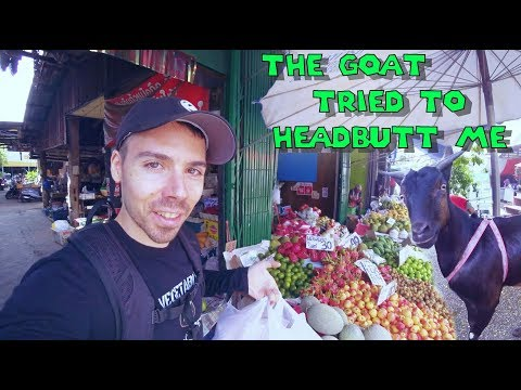 Exploring The Streets Of Chiang Mai For The First Time!