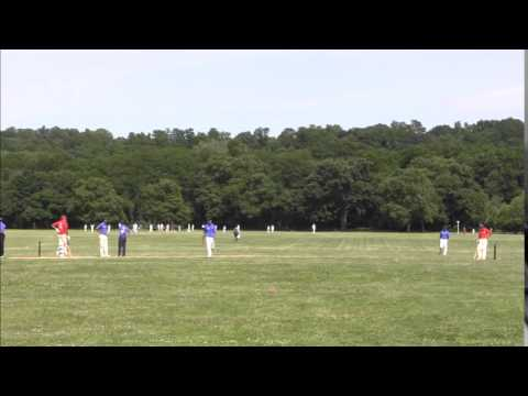 2014 NYC Mayor's Cup Cricket All-Star Game