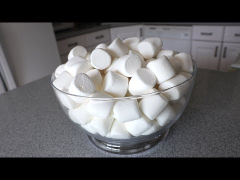 80 Marshmallows Eaten in 60 Seconds!! (Episode #21)