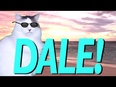 Happy Birthday Dale Epic Cat Happy Birthday Song Youtube