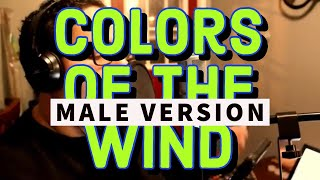 """Gambar cover """"Colors Of The Wind"""" Pocahontas - Male Version"""