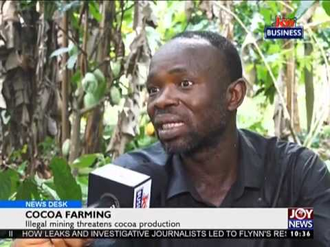 Illegal Mining threatens Cocoa Production - News Desk on Joy News (15-2-17)