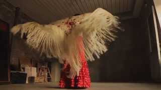 ESH VIDEO - Flamenco dancer promo (