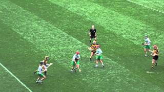 Amazing Camogie Block Attempt