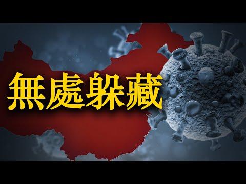 💥继续追溯新冠病源 美国会听证会锁定中国实验室【希望之声TV-两岸要闻-2021/7/2】