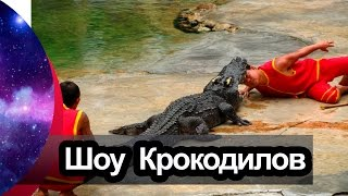 Секреты шоу крокодилов Тайланд Паттайя | Crocodile SHOW Pattaya Thailand