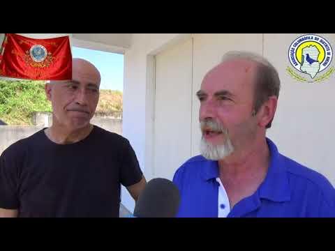 Columbofilia / Abrir Relógio (S.C.Escapães) / Vendas Novas (Jun.2018) / VL21