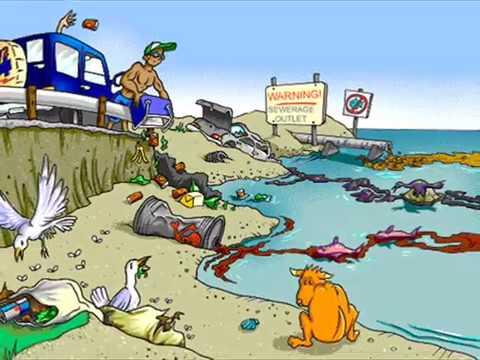 Sustainable Tourism Case Study