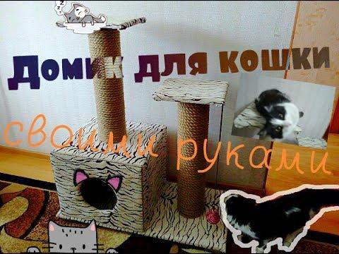Домик для кошки своими руками видео