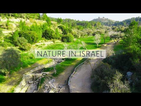 Ayalon Canada Park - Jewish National Fund Of Israel