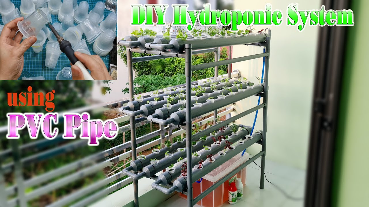 How to make a Hydroponic System at home using PVC Pipe