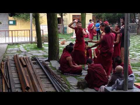 Dharamsala. Ejercicios de debate de los monjes tibetanos
