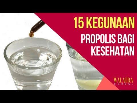 Inilah 15 Khasiat & Kegunaan Obat Propolis Bagi Kesehatan - Mengobati Berbagai Jenis Penyakit