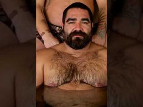 BEAR GAY - HAIRY BEAR PICS 03