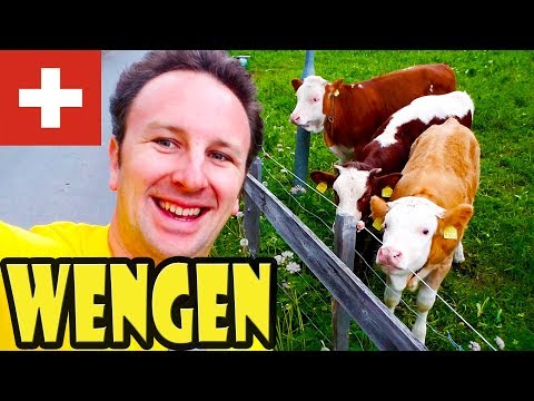 Wengen Switzerland Travel Guide