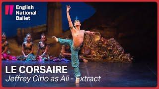 Le Corsaire: Jeffrey Cirio as Ali (extract) | English National Ballet