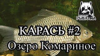 Російська рибалка 4 озеро Комариное Карась